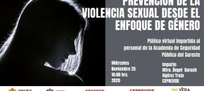 pagina-violencia sexual